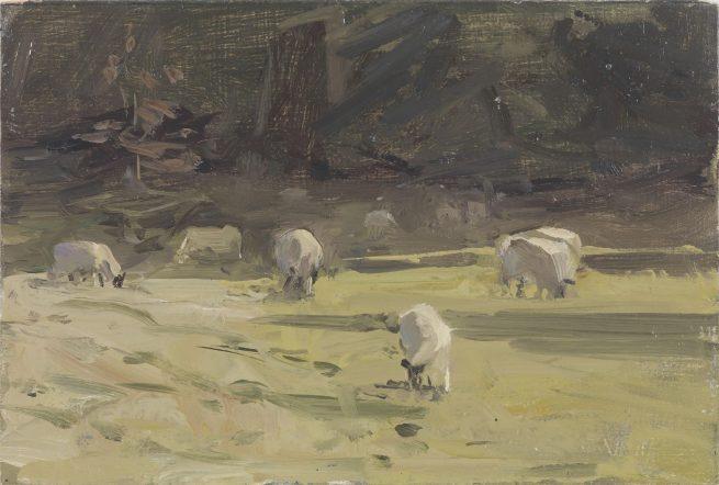Sheep Below Lansdown Crescent